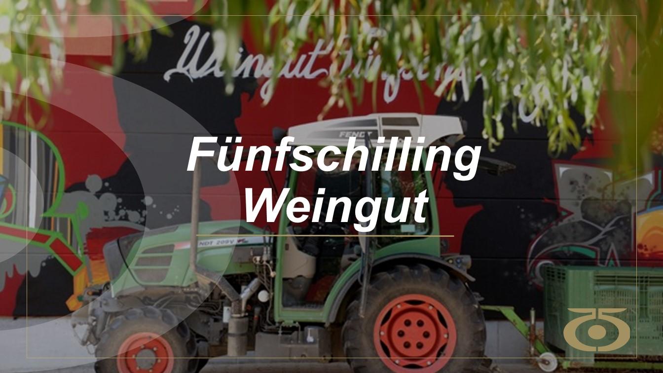 Weingut-website